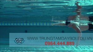 Kỹ thuật tay trong Bơi Sải  Kỹ thuật tay trong Bơi Sải  Kỹ thuật tay trong Bơi Sải